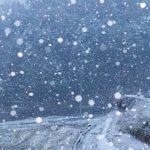 札幌で雪虫は9月20日から毎日見ている!2018年初雪もう降る?