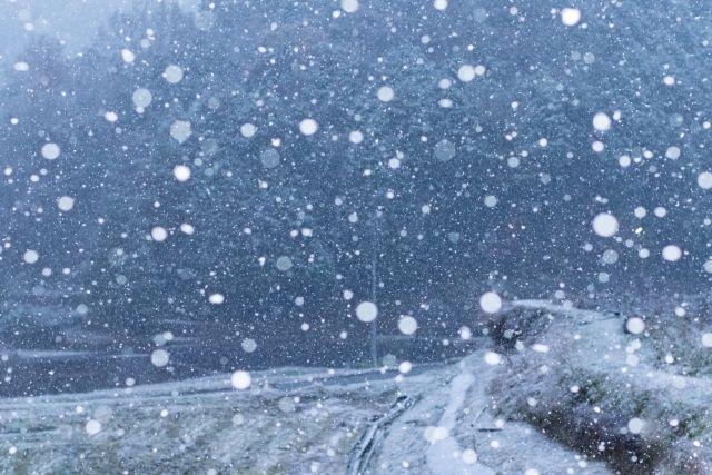 雪虫を見てから初雪まではどのくらいの時間がかかるの?