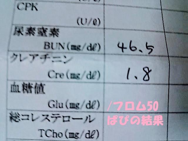 ぱぷの慢性腎不全の結果,フロム50