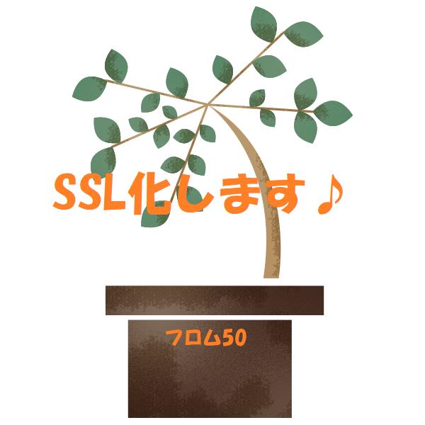 SSL化 (1),フロム50