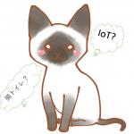 気になる!シャープが猫用IoT活用猫用トイレ「ペットケアモニター」の発売?