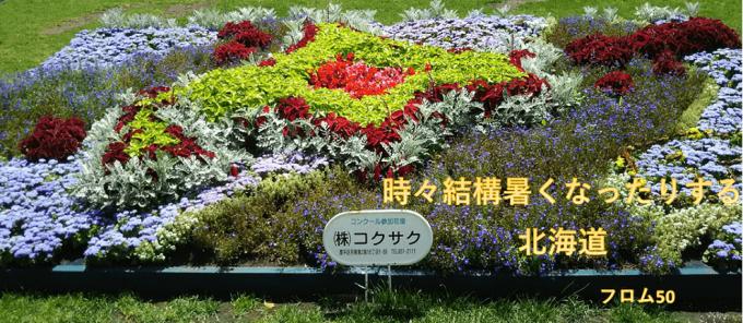 大通公園の花壇,フロム50