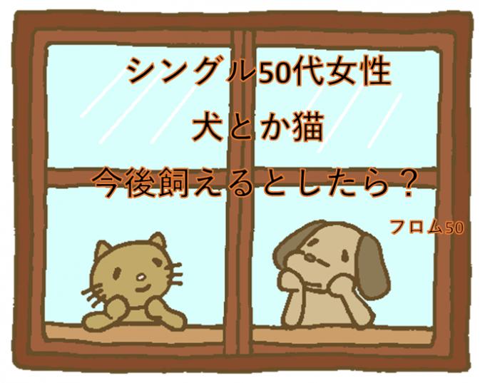犬猫s,フロム50