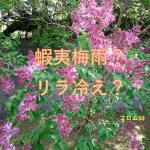蝦夷梅雨ではない本物の梅雨が北海道に?「リラ冷えの街」知ってる?