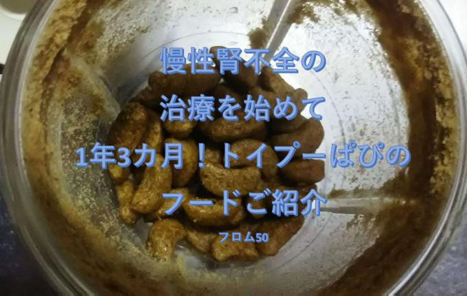 ぱぴの半手作りフード,フロム50