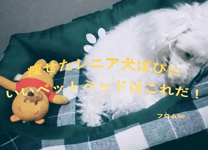 ぱーくんベッドs,フロム50