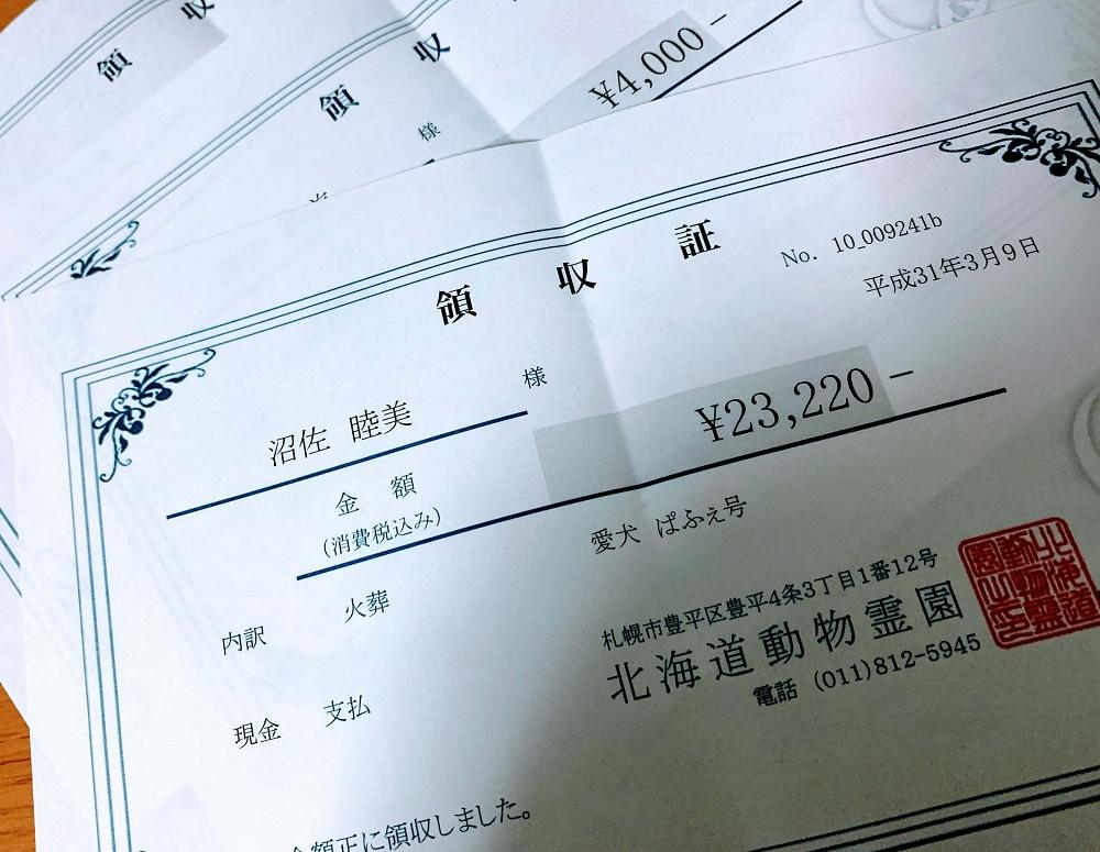 ぱぴの出発,フロム50